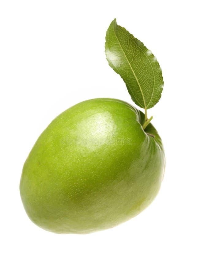Grüne Jujubefrucht stockfotografie
