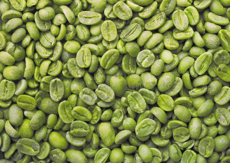 Grüne Kaffeebohnen stockbild