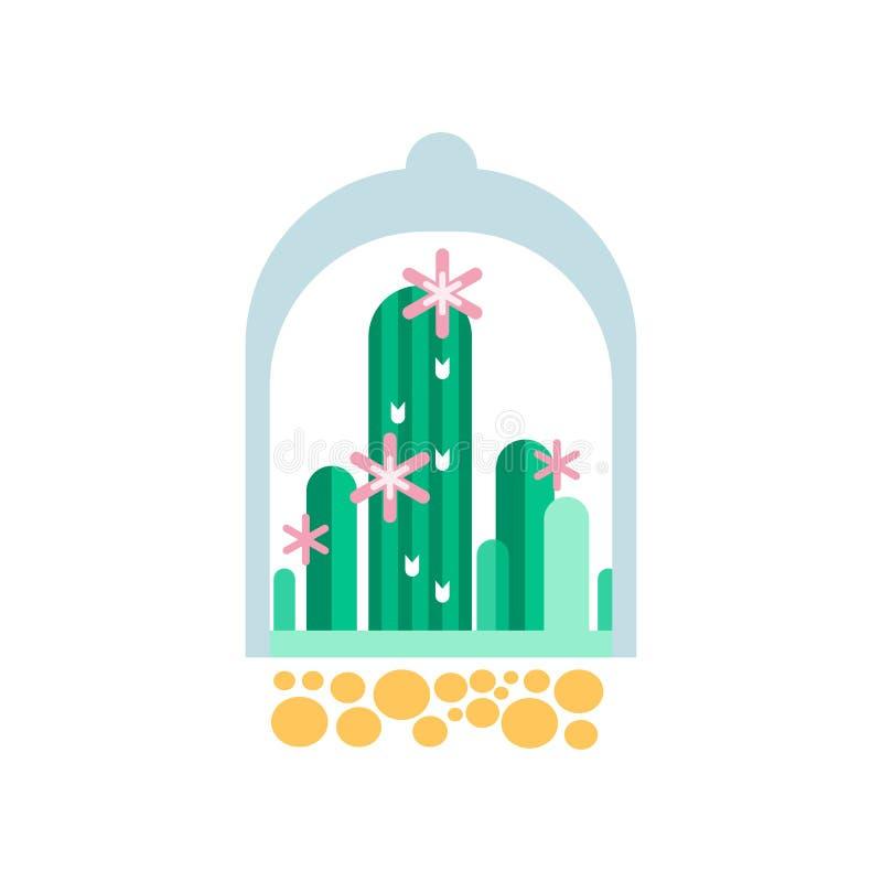 Grüne Kaktuspflanzen mit rosa Blumen unter transparenter Haube Flache Vektorikone von Haupt- Succulents im Glas-florarium lizenzfreie abbildung