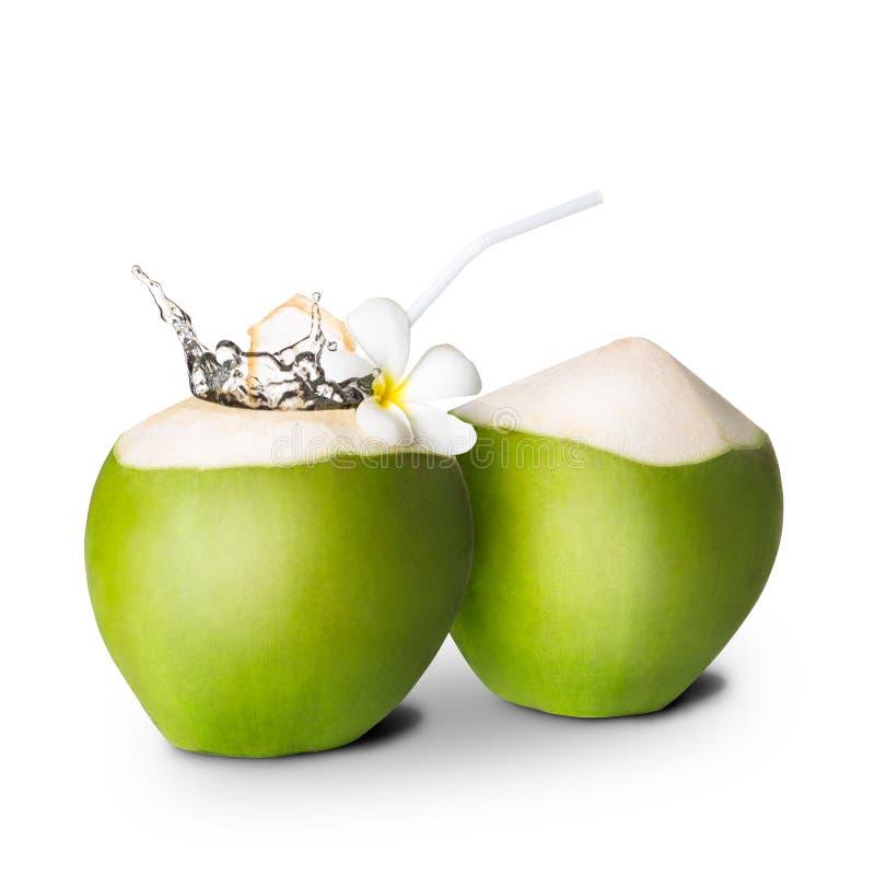 Grüne Kokosnuss mit Wasserspritzen stockbild