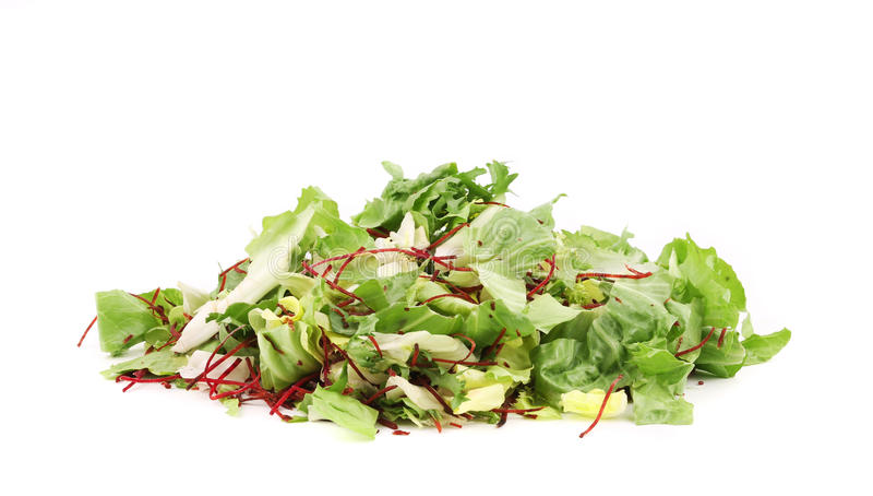 Grüne Kopfsalatblätter lizenzfreies stockfoto
