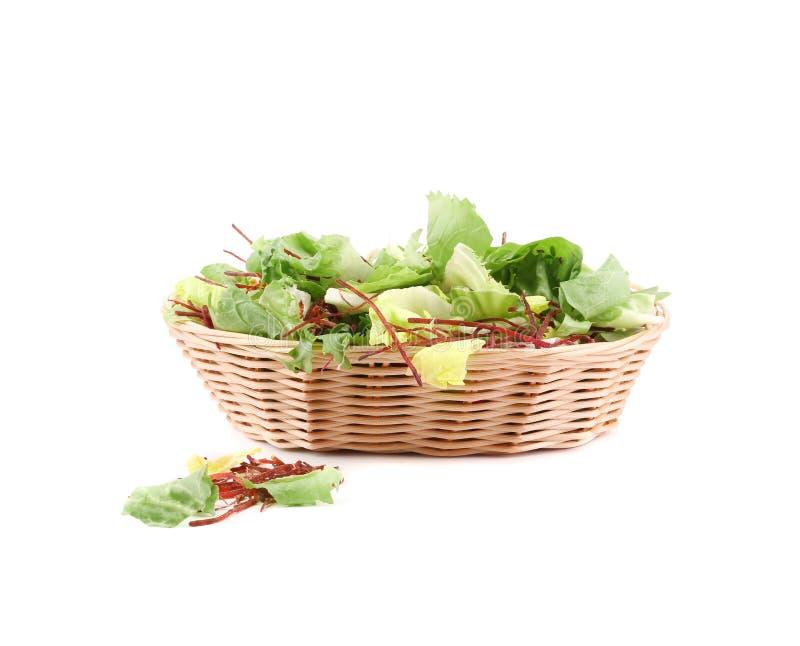 Grüne Kopfsalatblätter lizenzfreies stockbild