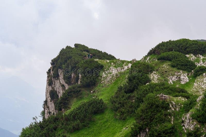 Grüne Landschaft in den österreichischen Alpen stockbild