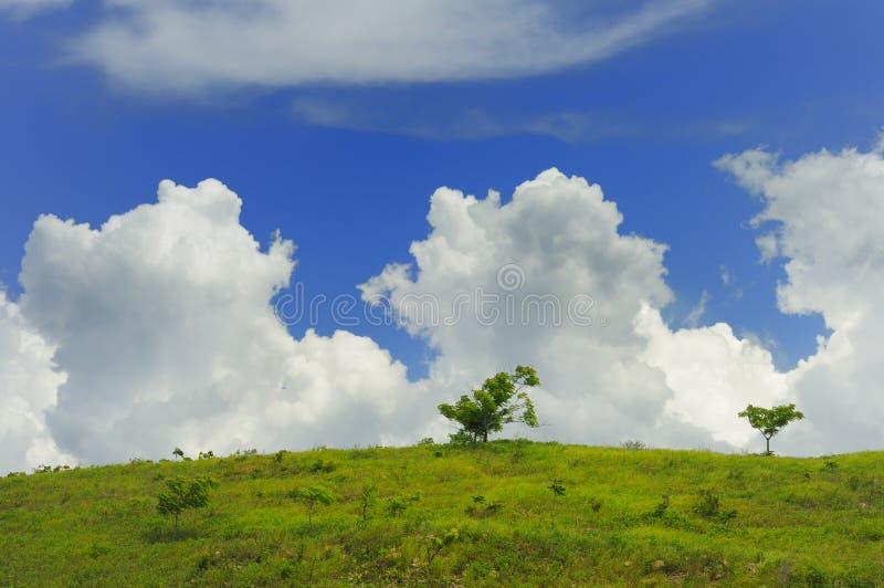 Grüne Landschaft mit Wolken stockbilder