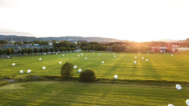 Grüne Landschaft in Norwegen stockbilder