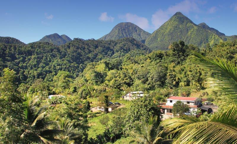 Grüne Landschaft von der Insel-Dominikanischen Republik. stockfotografie