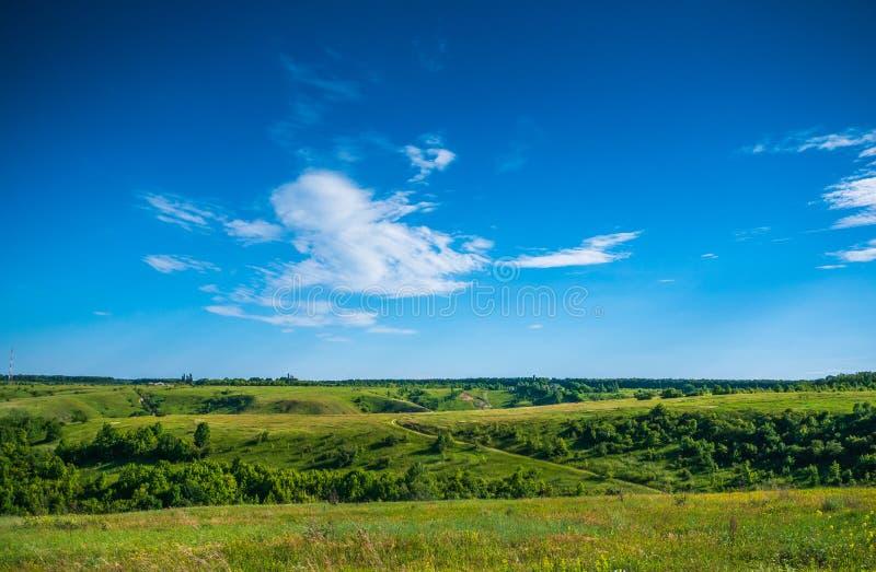 Grüne Naturlandschaft mit Wiesenhügeln und blauem Himmel, ruhige Landschaft stockbilder