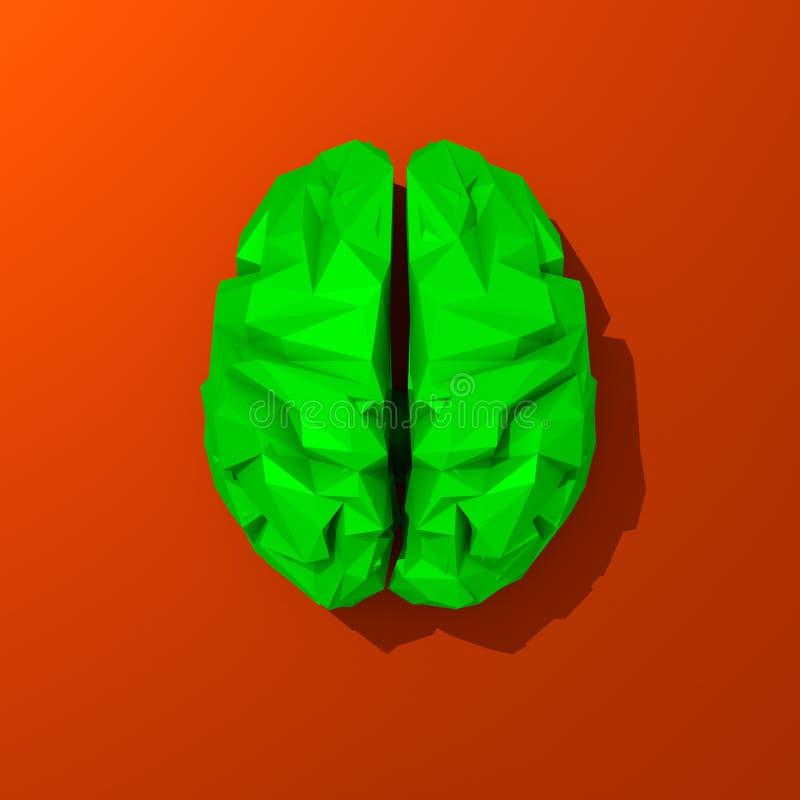 Grüne niedrige polygonale Gehirnillustrationsnahaufnahme lizenzfreie abbildung