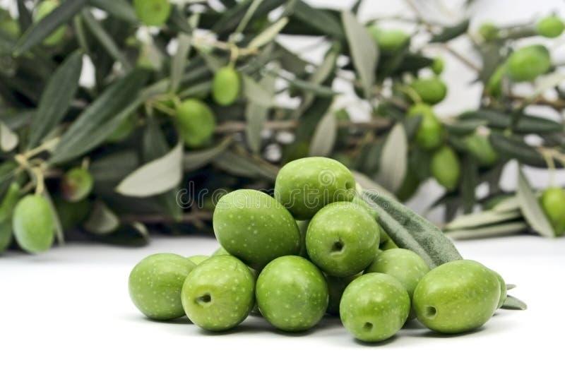 Grüne Oliven Isloated Auf Weiß Lizenzfreies Stockbild