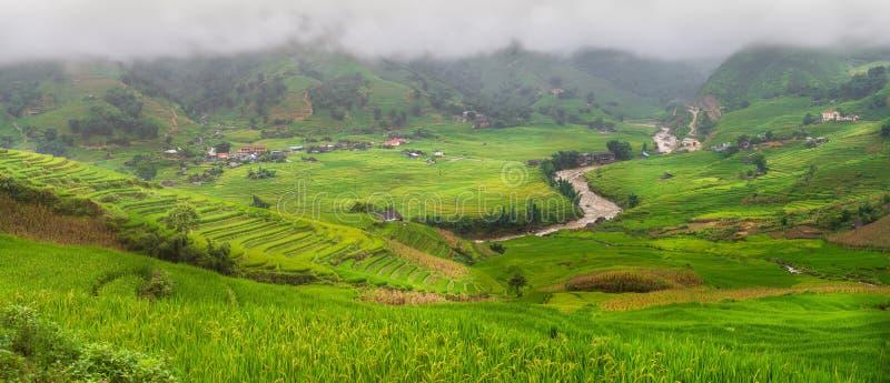 Grüne Reisfelder auf terassenförmig angelegtem Panorama in MU-cang Chai, Vietnam lizenzfreie stockfotos