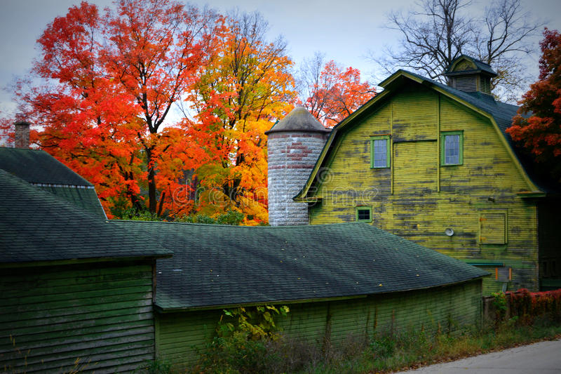 Grüne Scheune mit Fall-Farben stockfotos