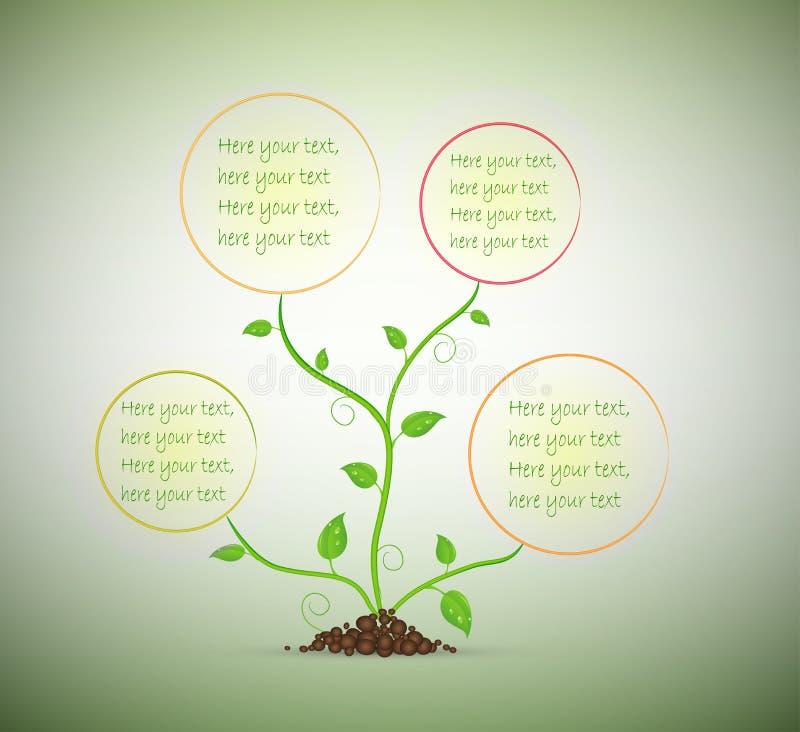 Grüne Sprösslingsanlage mit Raum für Text auf dem Boden lokalisiert, stock abbildung