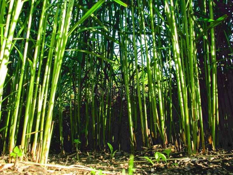 Grüne Stadt jungle9, gefälschter Bambus stockfotografie