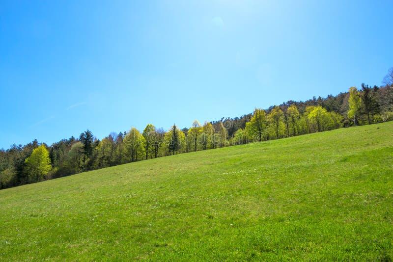 Grüne Steigung lizenzfreie stockbilder