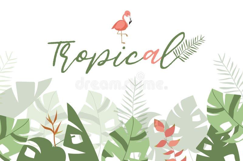 Grüne tropische Grußkarte mit Palme, Kokosnussbaum, Hibiscus, Florida stock abbildung