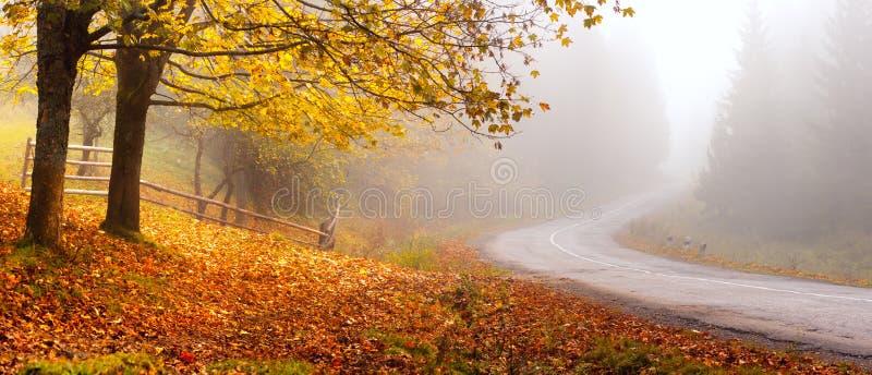Grüne und gelbe Bäume Herbstliche Landschaft mit Nebel über Straße lizenzfreie stockbilder