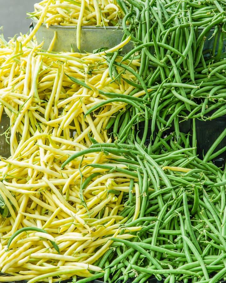 Grüne und gelbe Brechbohnen stockfotos