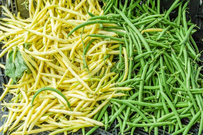 Grüne und gelbe Brechbohnen lizenzfreie stockbilder
