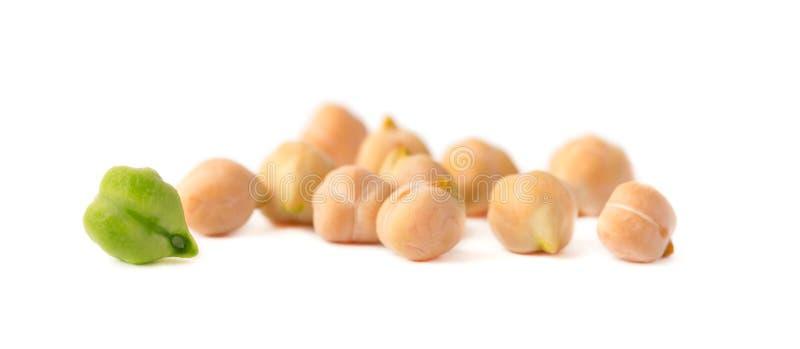 Grüne und reife Bohnenkichererbse lokalisiert Getrocknete Kichererbsenbohnen, lokalisiert auf einem weißen Hintergrund lizenzfreies stockbild