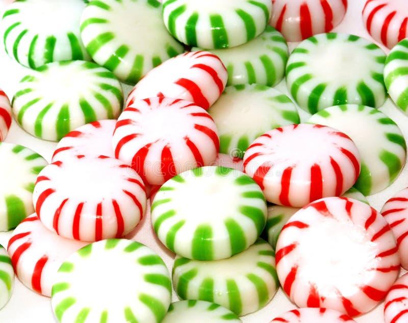 Grüne und rote Minzen stockfotos