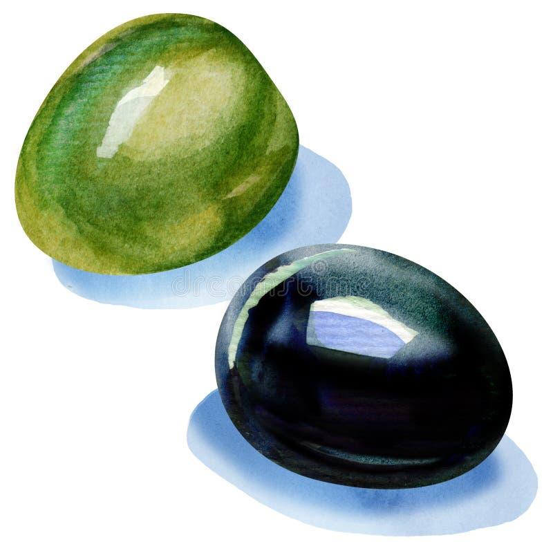Grüne und schwarze Oliven stock abbildung