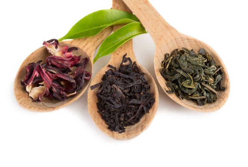 Grüne und schwarze Teeblätter lizenzfreies stockfoto