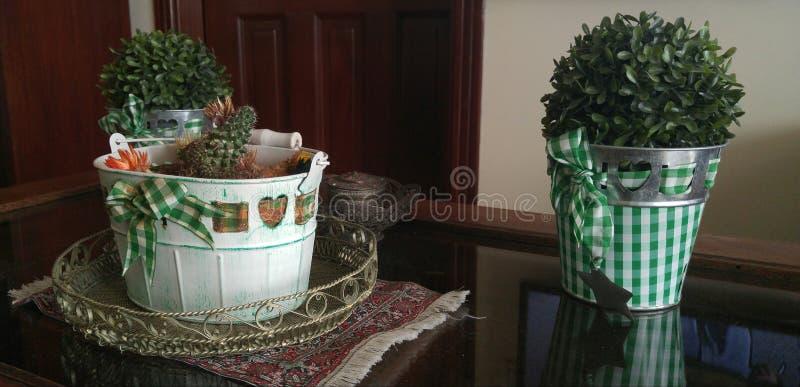 Grüne und weiße Themasitzung stockbild