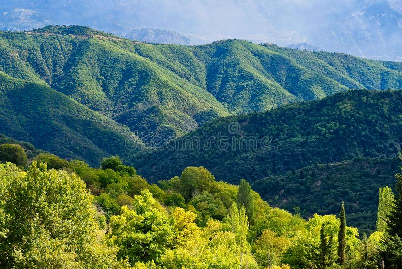Grüne Wälder, griechische Berglandschaft im Sturm-Licht stockbilder