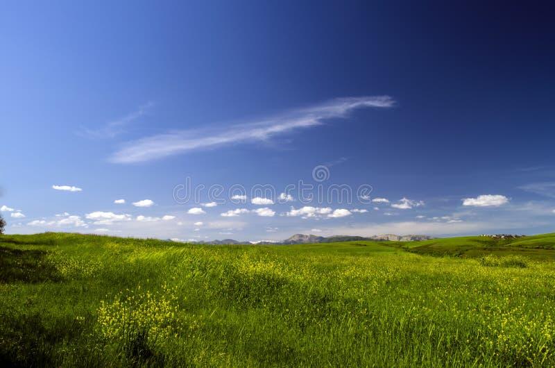Grüne Wiese im Berg Aufbau der Natur Schöne Landschaft der großen Kaukasus-Frühlingsansicht der Natur Frühling in Aserbaidschan stockfotografie