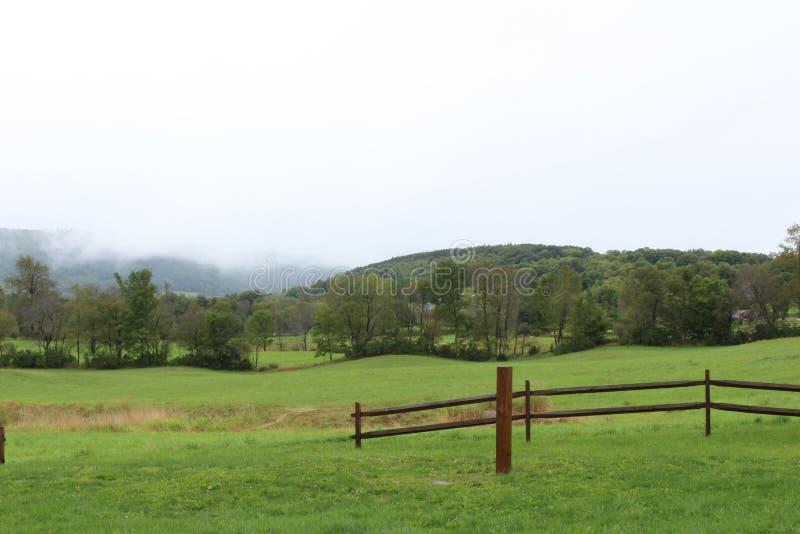 Grüne Wiese mit Zaunöffnung und nebeliger Gebirgsszene hinten stockfoto
