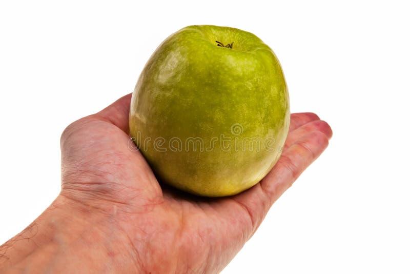 Grüner Apfel, der auf weiße männliche Hand legt. stockfotografie