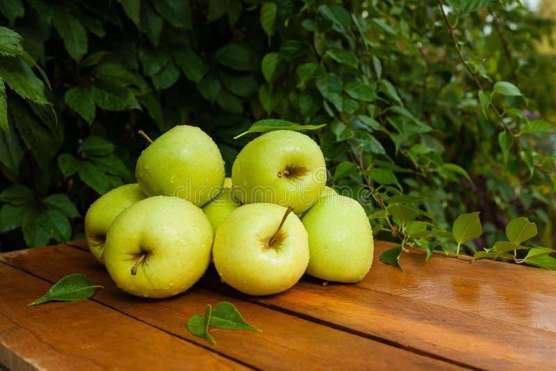 Grüner Apfel im Dorf lizenzfreie stockbilder