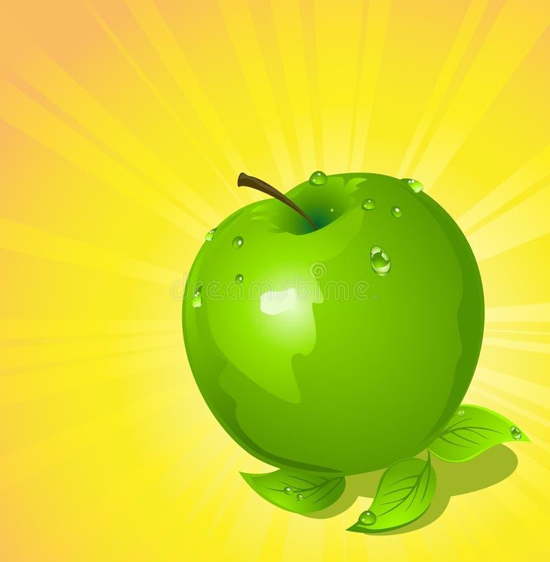 Grüner Apfel, vektorabbildung vektor abbildung