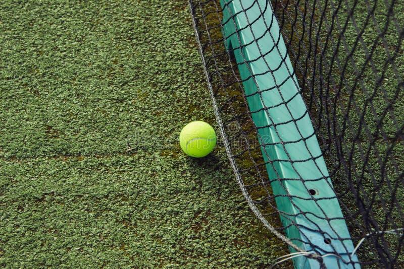 Grüner Ball liegt auf dem Gras lizenzfreies stockfoto