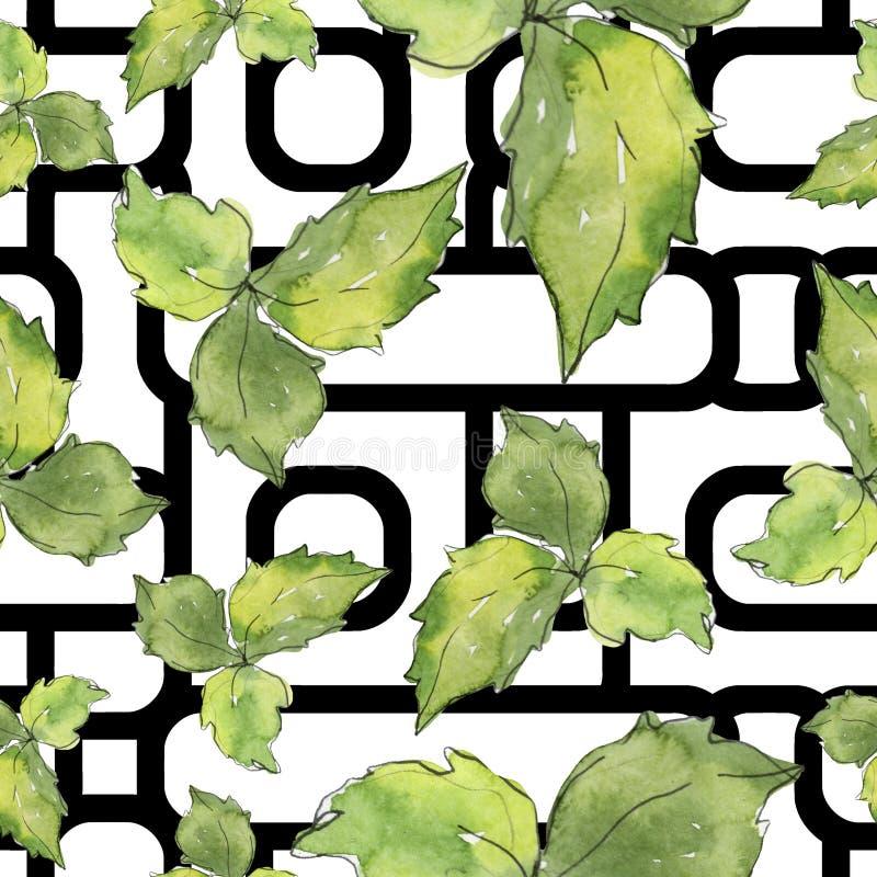 Grüner Basilikum verlässt frische gesunde Nahrung Aquarellhintergrund-Illustrationssatz Nahtloses Hintergrundmuster lizenzfreie abbildung