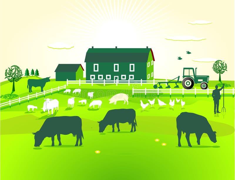 Grüner Bauernhof stock abbildung