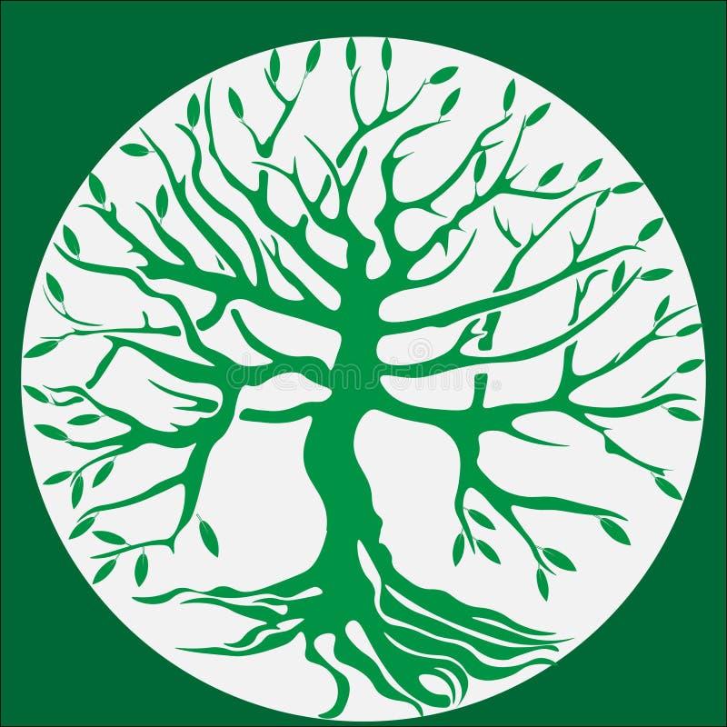 Grüner Baum mit Wurzeln lizenzfreie abbildung