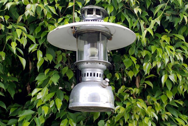 Grüner Baumzaun mit klassischer Lampe lizenzfreies stockfoto