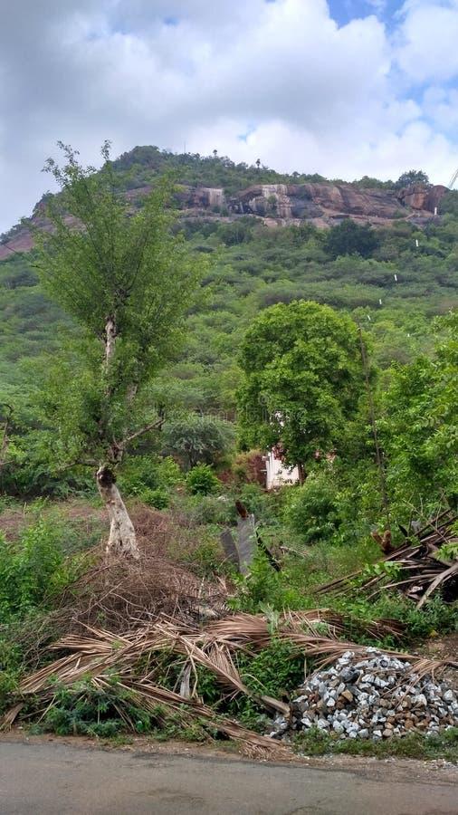 Grüner Berg stockbild
