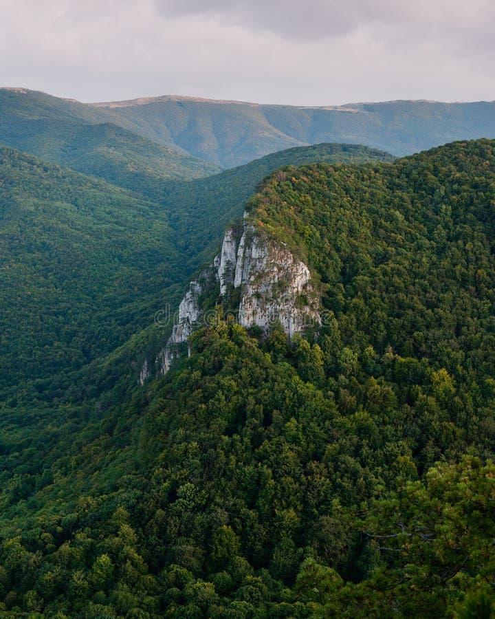 Grüner Berg stockfotografie