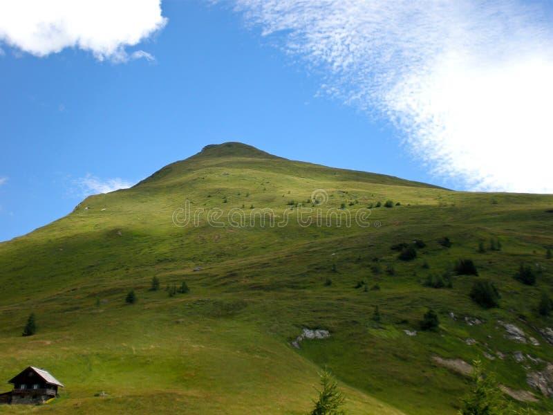 Grüner Berg des Hügels im Sommer stockfoto