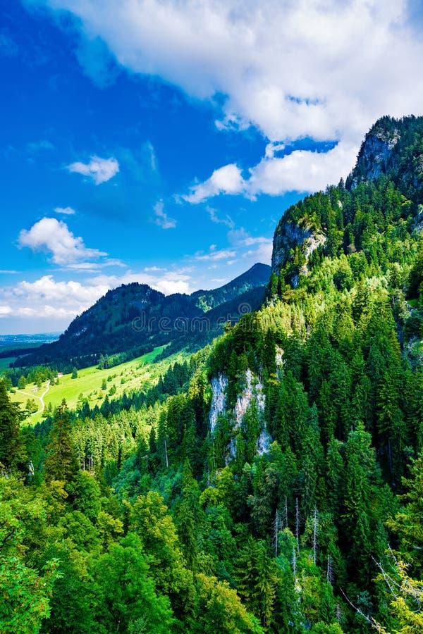 Grüner Berg lizenzfreie stockfotos