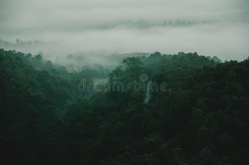 Grüner Berg mit Baum lizenzfreie stockfotografie