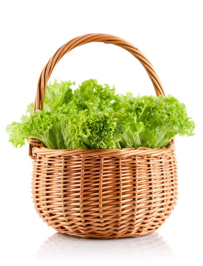 Grüner Blattkopfsalat im Korb lizenzfreie stockbilder