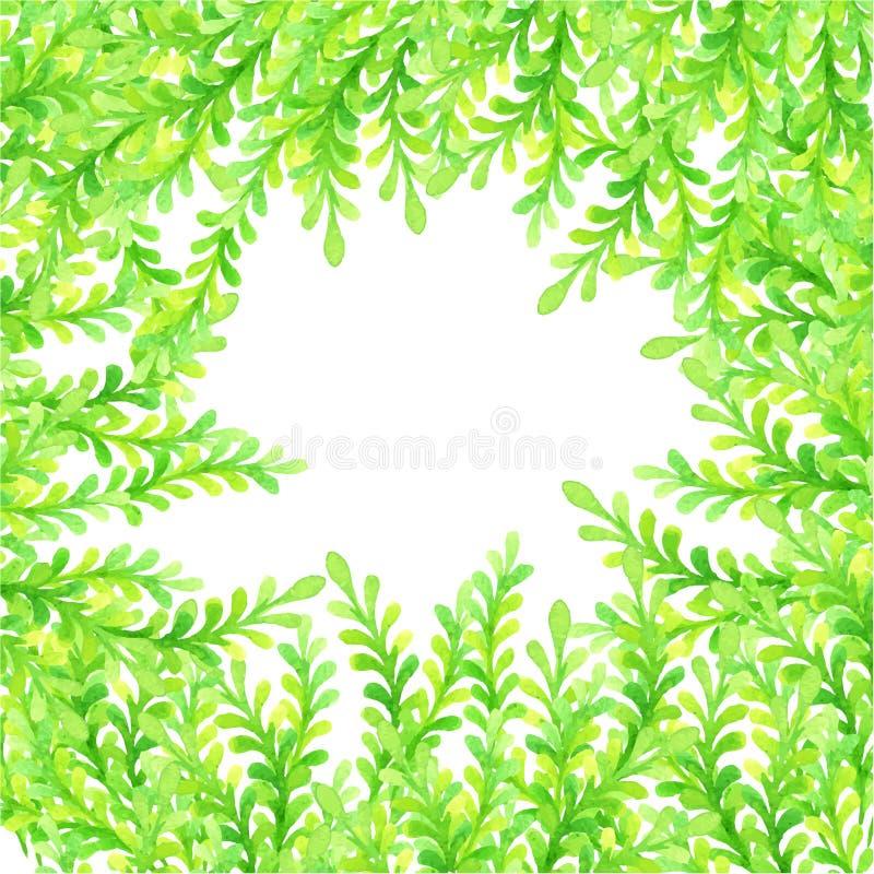 Grüner Blumenaquarellrahmen stock abbildung