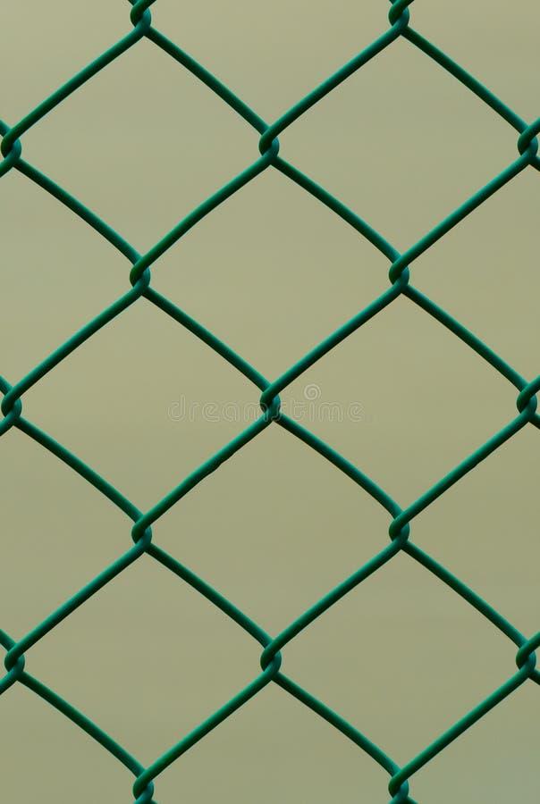 Grüner Draht-Zaun Lokalisiert Auf Brown-Hintergrund, Vertikales ...