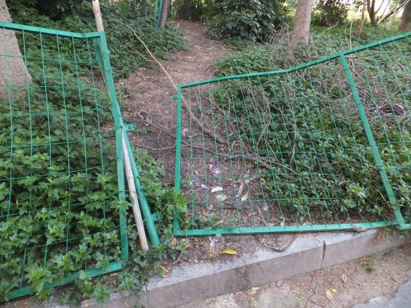 Grüner Drahtzaun stockfoto. Bild von pfad, bäume, draht - 77463840