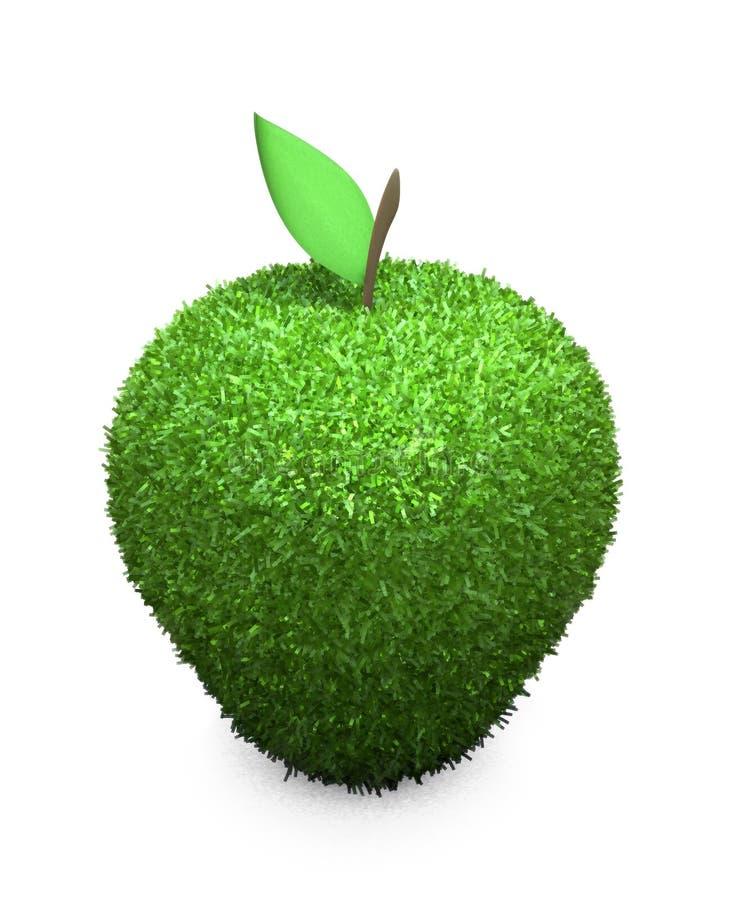 Grüner flaumiger Apfel stock abbildung
