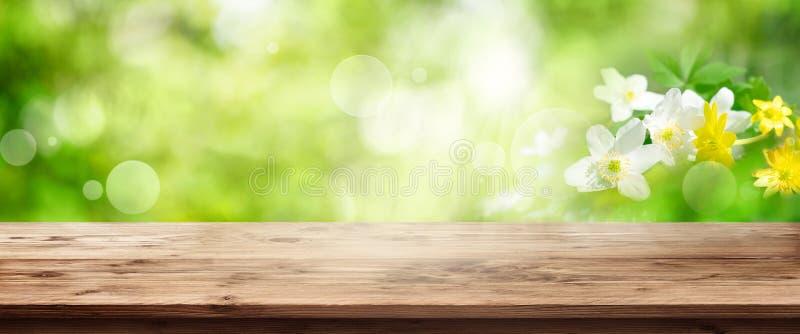 Grüner Frühlingshintergrund mit Holztisch lizenzfreie stockfotos
