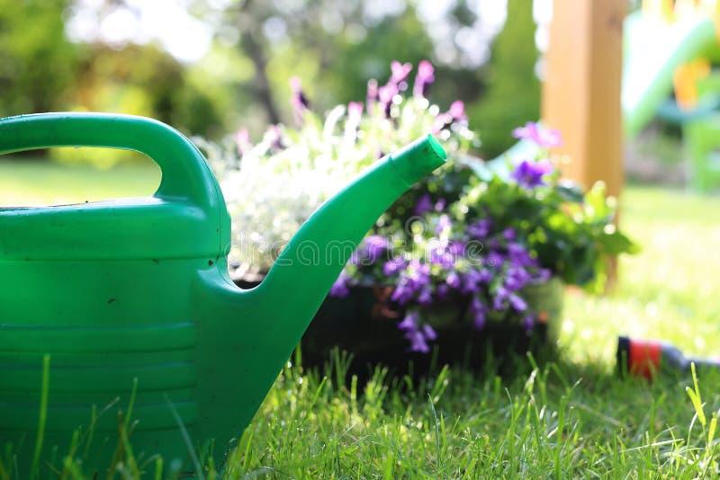Grüner Garten lizenzfreies stockfoto